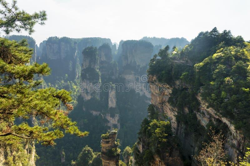 De spectaculaire Avatar Hallelujaberg stock afbeelding