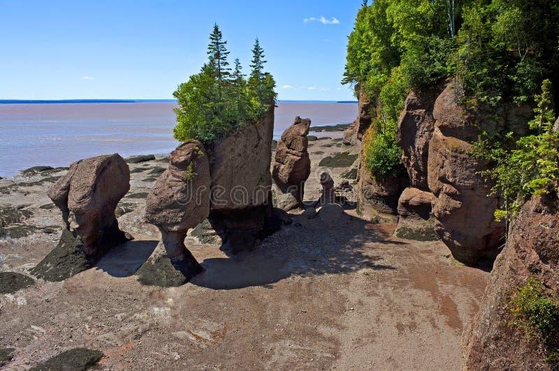 De spectaculaire rotsen van de bloempot, Baai van Fundy royalty-vrije stock afbeelding