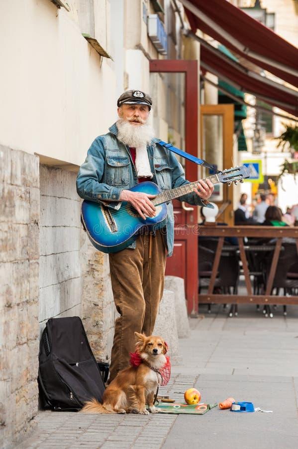 De spelengitaar van de straatmusicus op een stadsstraat stock afbeelding