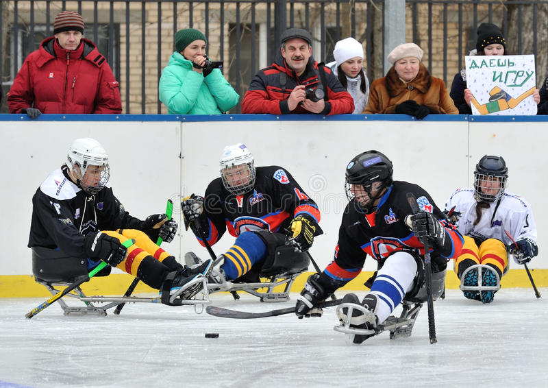 De spelers van het sleehockey op de achtergrond van toeschouwers royalty-vrije stock foto's
