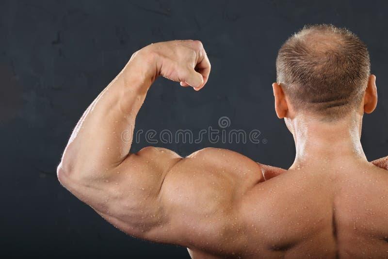 De spieren van de rug, van de hals en van de hand van bodybuilder royalty-vrije stock foto's