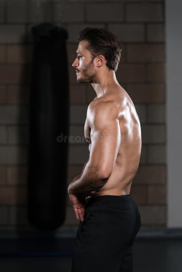 De spierspieren van de mensenverbuiging in gymnastiek royalty-vrije stock foto's