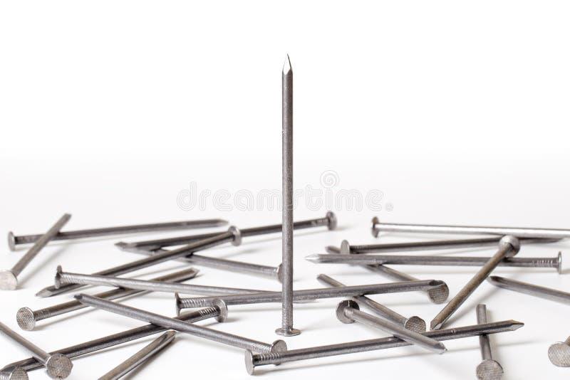 De spijkers van het staal stock foto
