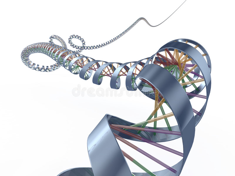 De spiraal van DNA stock illustratie