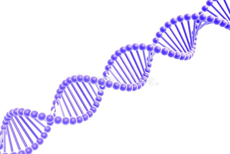 De spiraal van DNA royalty-vrije illustratie