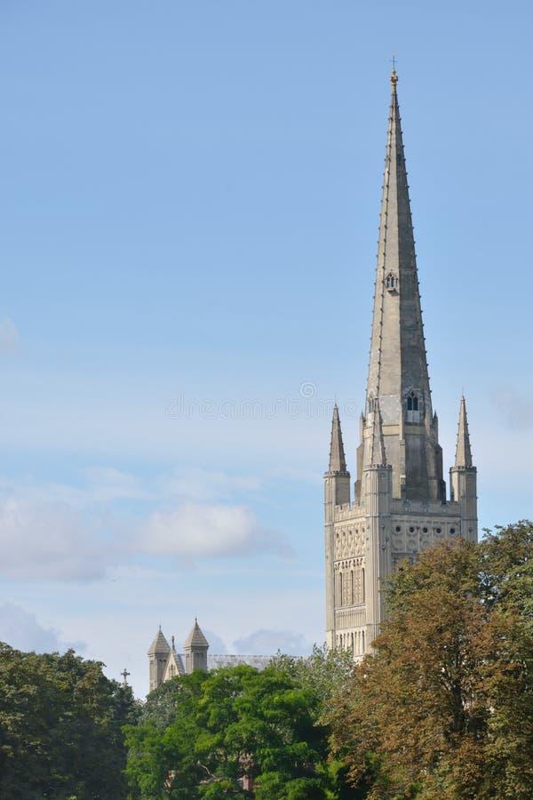De Spits van de Kathedraal van Norwich stock foto