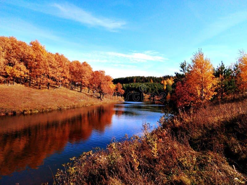 De splendor van het herfstseizoen royalty-vrije stock foto's