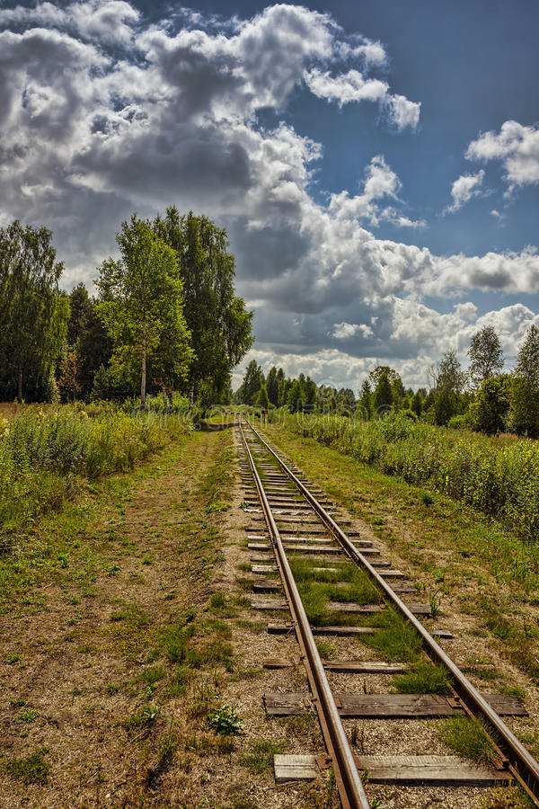 De spoorweg in het hout stock foto's