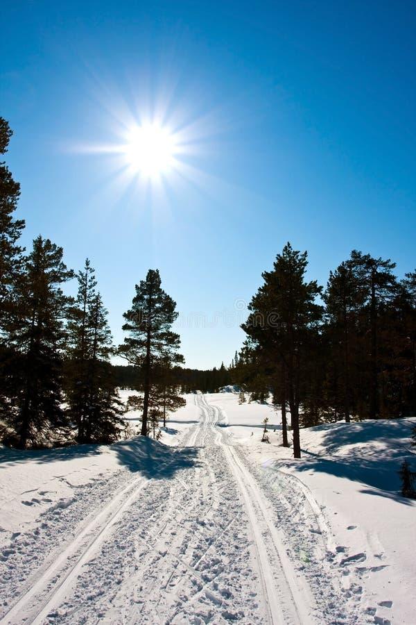 De sporen van de ski royalty-vrije stock foto