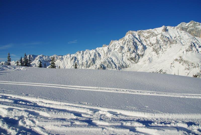 De sporen van de ski royalty-vrije stock afbeeldingen