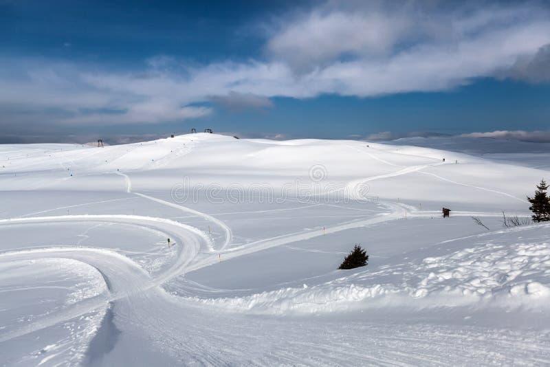 De sporen van de ski in sneeuw royalty-vrije stock foto's