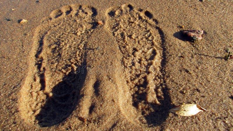 De sporen van naakte voeten gingen op het natte zand van de Bank van de stadsrivier weg stock foto
