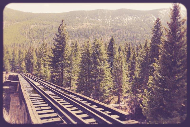 De sporen van de spoorwegtrein door platteland stock foto