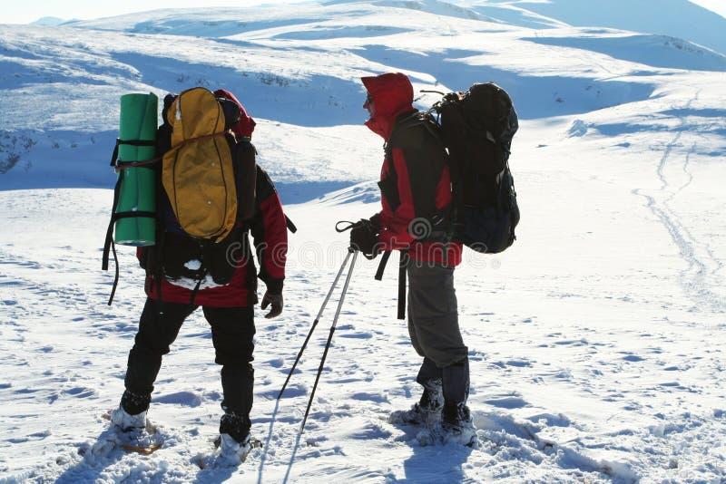 De sport van de winter stock foto
