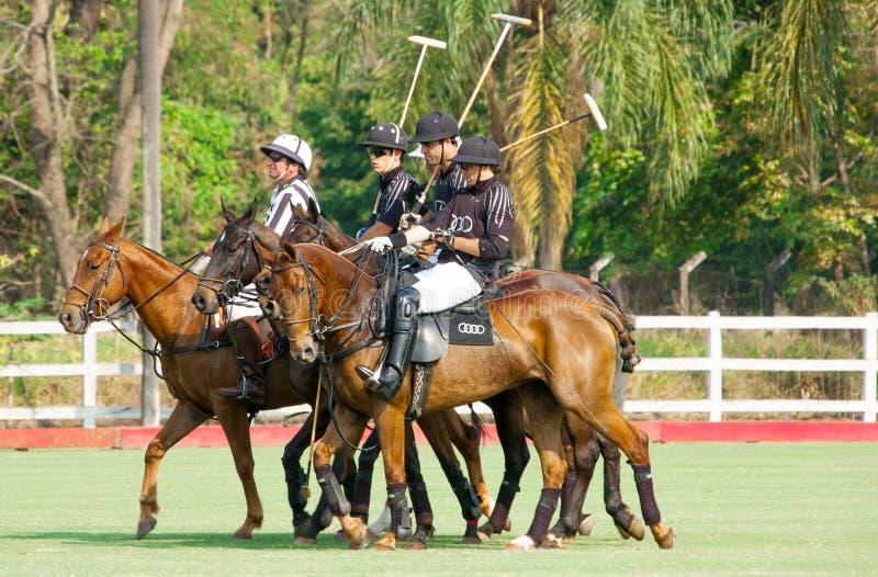De sportteam van het polo royalty-vrije stock fotografie