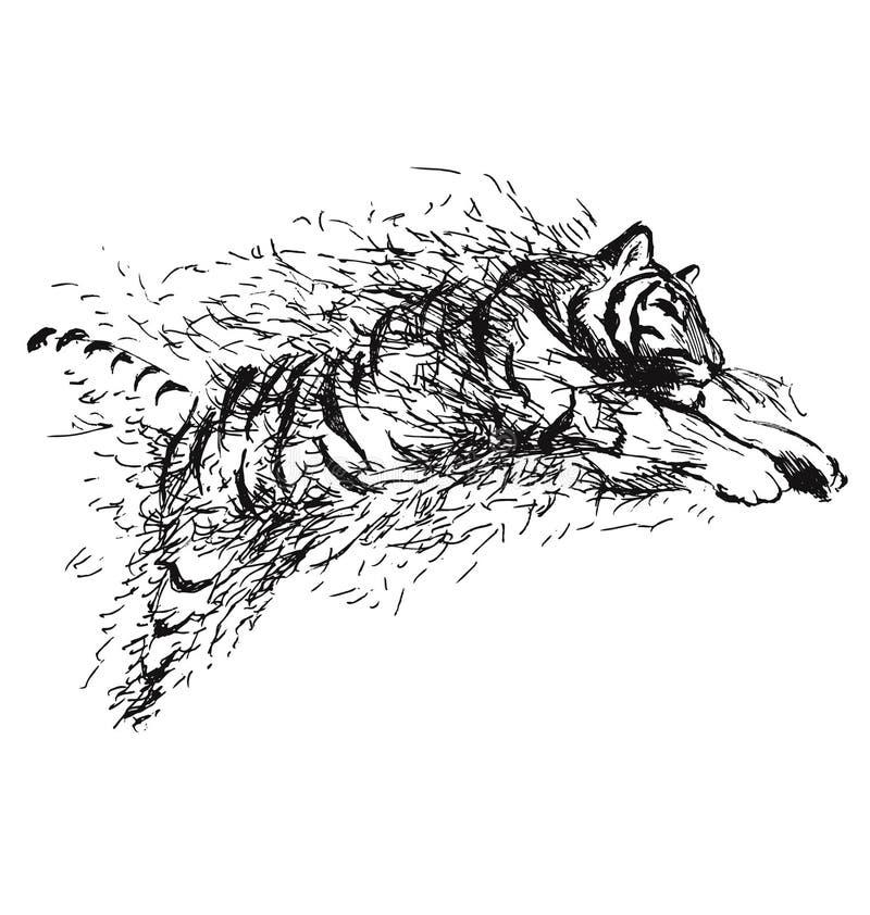 De springende tijger van de handschets stock illustratie