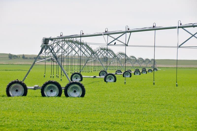 De sproeiers van de irrigatie op een landbouwbedrijfgebied royalty-vrije stock foto's