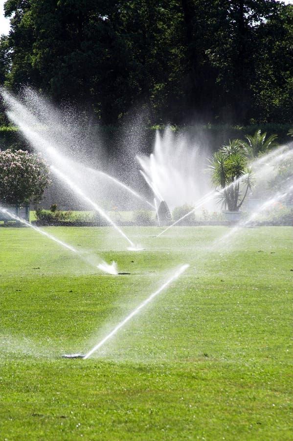 De sproeiers van het water stock fotografie
