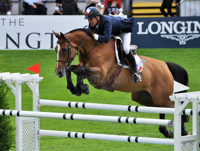 De Sprong van het paard stock foto