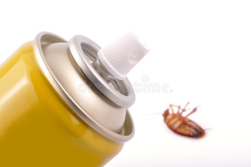 De spuitbus van de kakkerlak stock afbeelding