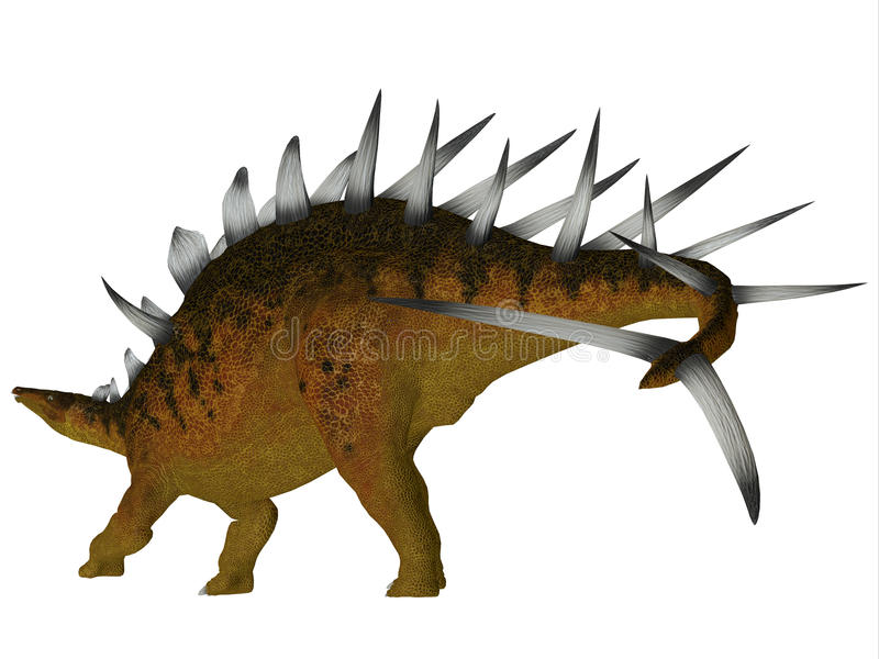 De Staart van de Kentrosaurusdinosaurus vector illustratie