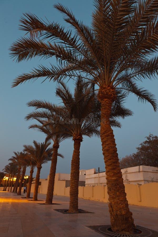 De stad van de avond stock afbeeldingen