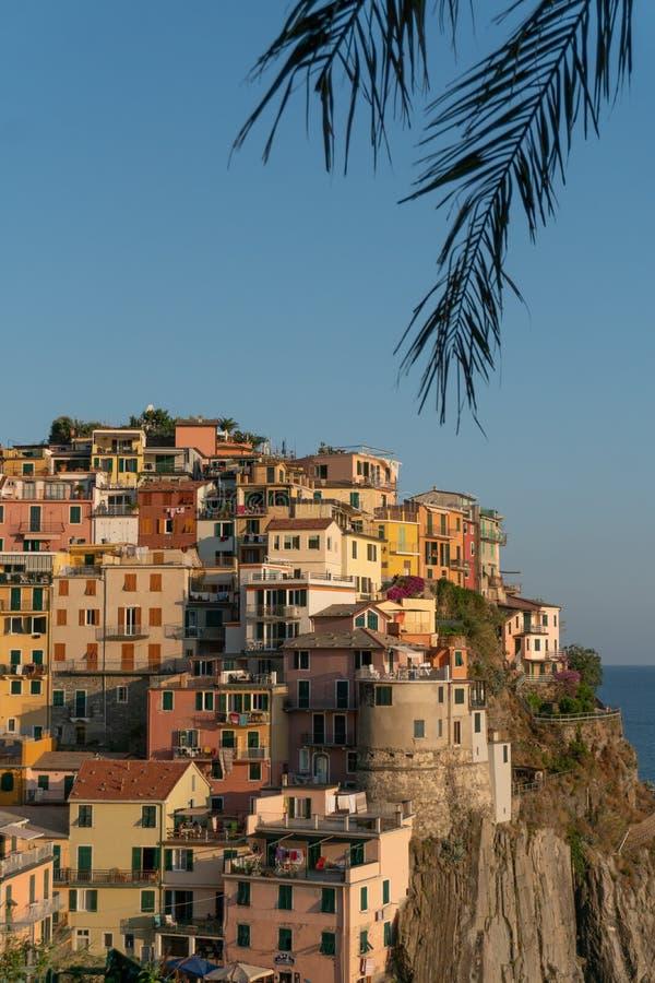 De stad van manarola door palm doorbladert royalty-vrije stock foto's
