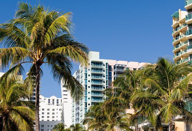 De stad van Miami toneel stock foto