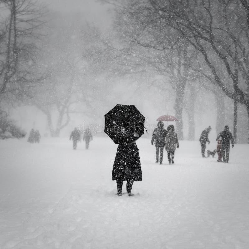 De Stad van New York, 1/23/16: Central Park dat in zware sneeuw tijdens de Winteronweer Jonas wordt behandeld royalty-vrije stock foto's