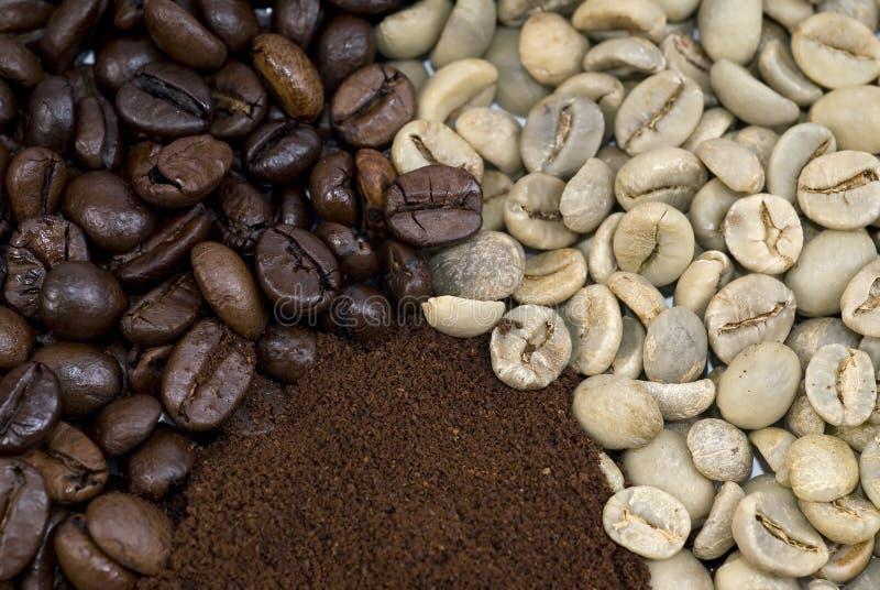 De stadia van de koffie royalty-vrije stock afbeeldingen