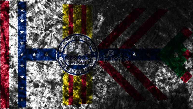 De stads grunge vlag van Tamper, de Staat van Florida, de Verenigde Staten van Amerika royalty-vrije illustratie