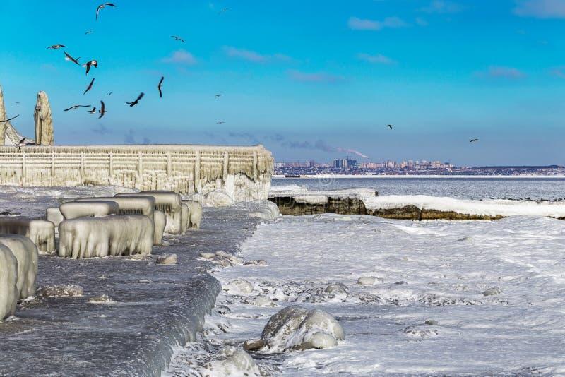 De stadsdijk en meeuwen van de Encrustedzwarte zee royalty-vrije stock fotografie