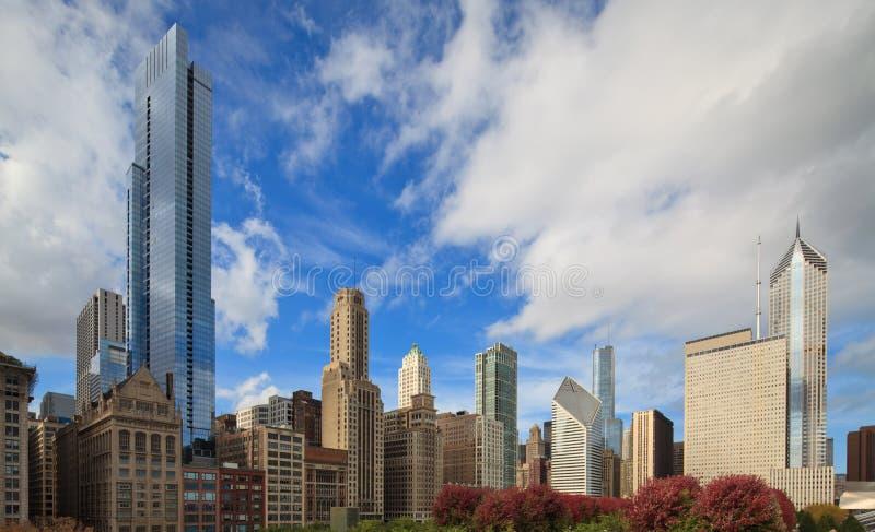 De stadshorizon van Chicago royalty-vrije stock fotografie