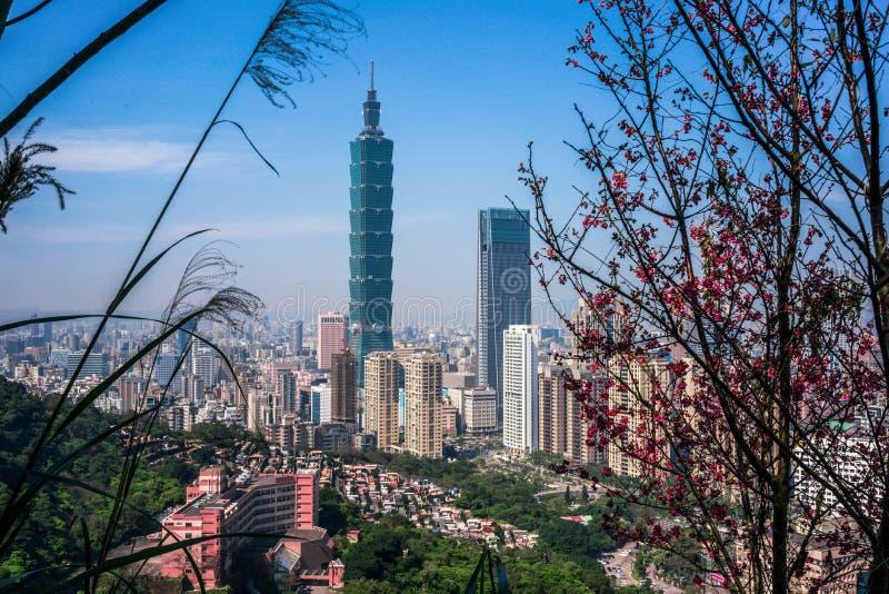 De stadshorizon van Taipeh met Taipeh 101 de bouw van Olifantsberg wordt bekeken in Taiwan dat stock afbeelding