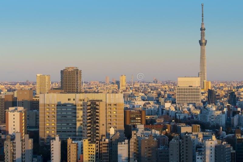 De stadshorizon van Tokyo in bedrijfsdistrict tijdens zonsondergang royalty-vrije stock fotografie