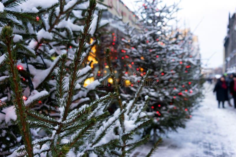 De stadsstraten zijn verfraaid met Kerstbomen met lichten stock afbeelding