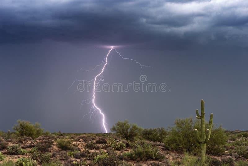 De stakingen van de bliksembout in een moessononweersbui over de woestijn van Arizona stock afbeelding