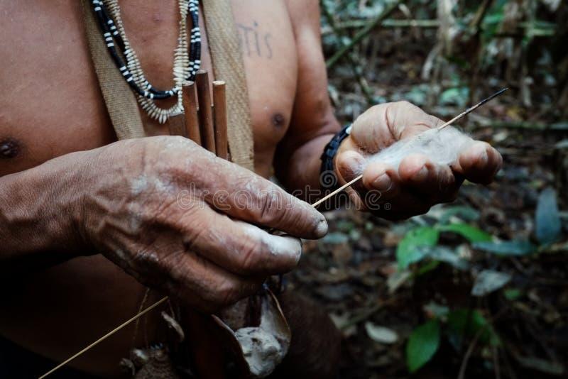 De stammen oudere jacht van Binan Tukum met zijn zoon voor apen in het regenwoud stock foto