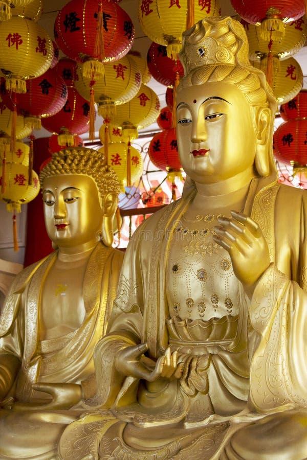 De Standbeelden van Boedha stock fotografie
