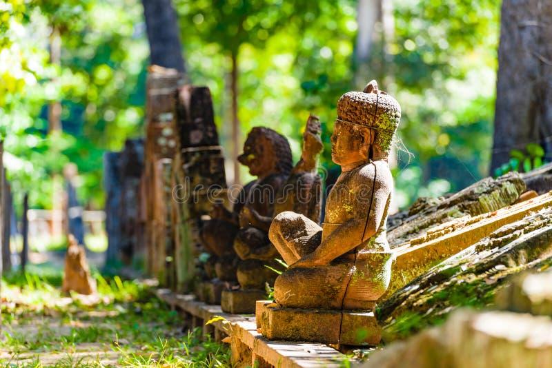 De Standbeelden van Boedha in bos stock afbeeldingen