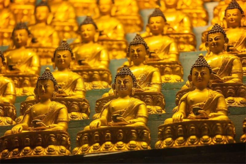 De standbeelden van Boedha Sakyamuni stock foto