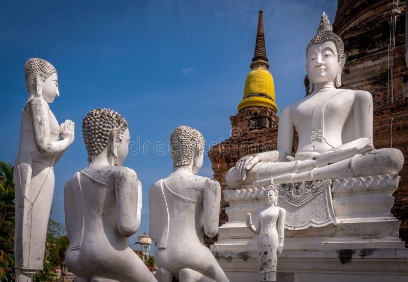 De standbeelden van Boedha in Thailand stock afbeeldingen
