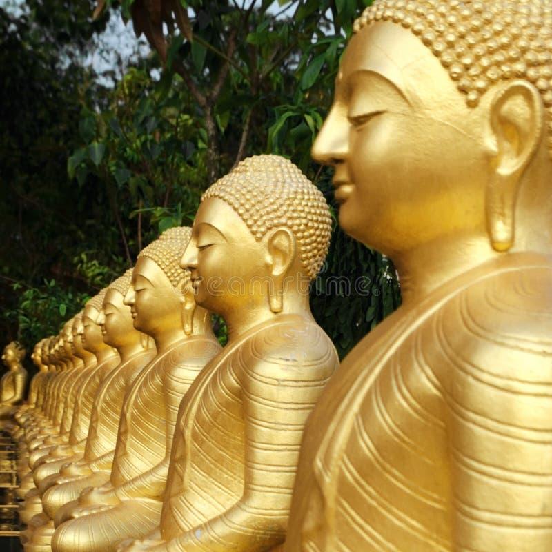 De standbeelden van Boedha zijn behandeld in op een rij geschikt goud, tuin met groene bomen royalty-vrije stock afbeelding