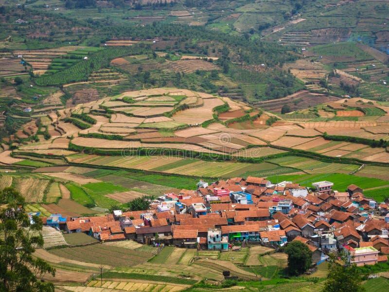 De stap landbouw en huizen in een dorp in een heuvelig gebied, India stock afbeelding