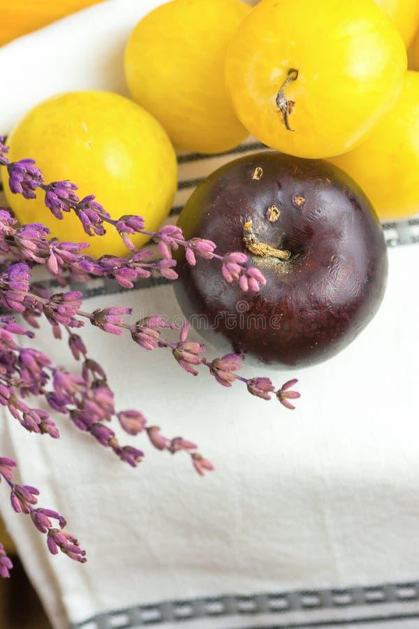 De stapel van rijp sappig organisch geel rood pruimenboeket van lavendel bloeit op witte katoenen handdoek Autumn Fall Produce Le stock fotografie