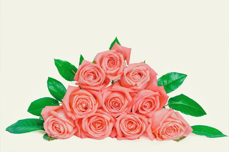 De stapel van roze roze bloemen isoleert op wit stock foto