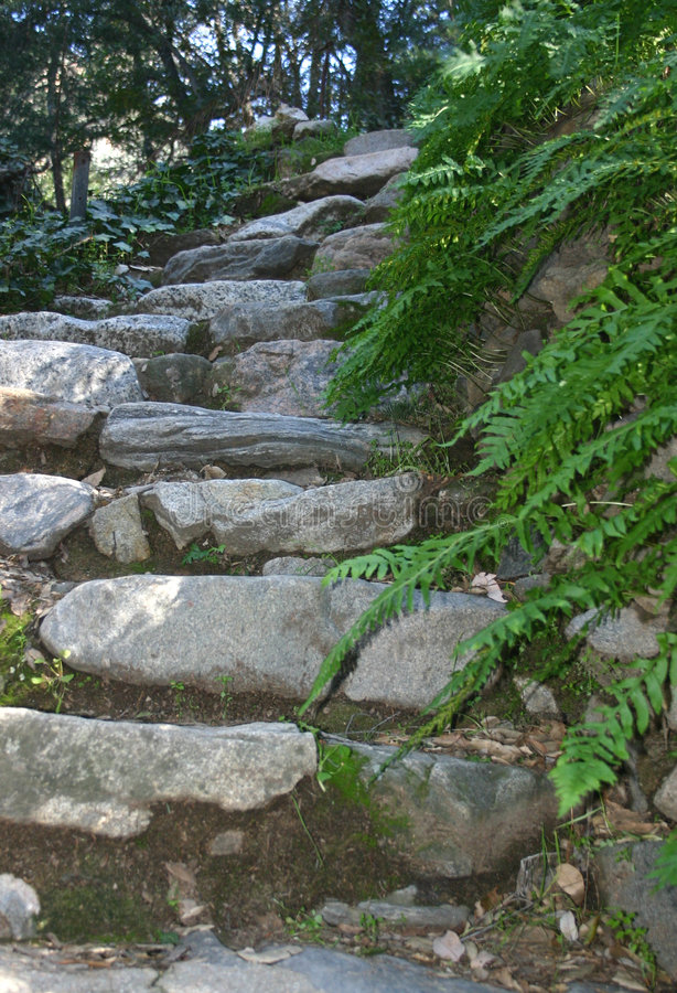 Download De Stappen van de steen stock afbeelding. Afbeelding bestaande uit historisch - 275471