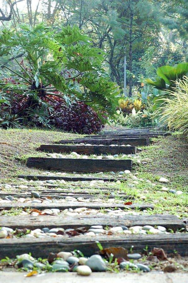 De stappen van de tuin stock foto