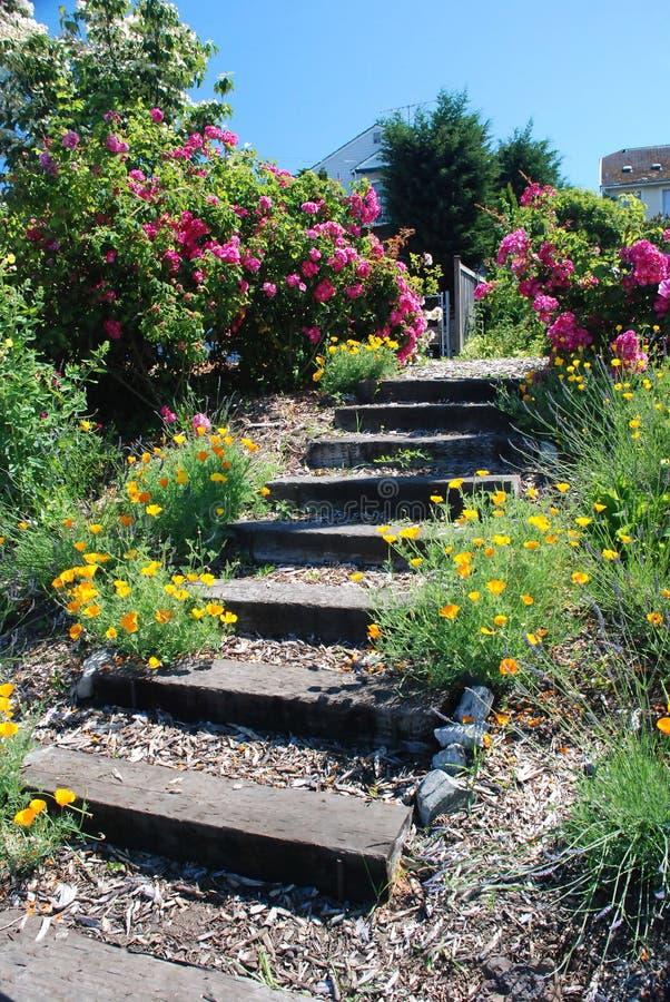 De Stappen van de tuin royalty-vrije stock foto's