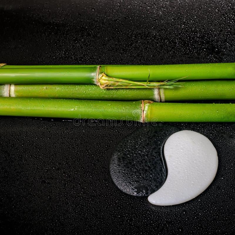 De station thermale toujours la vie du symbole Yin Yang et du bambou naturel sur le Ba de zen image stock